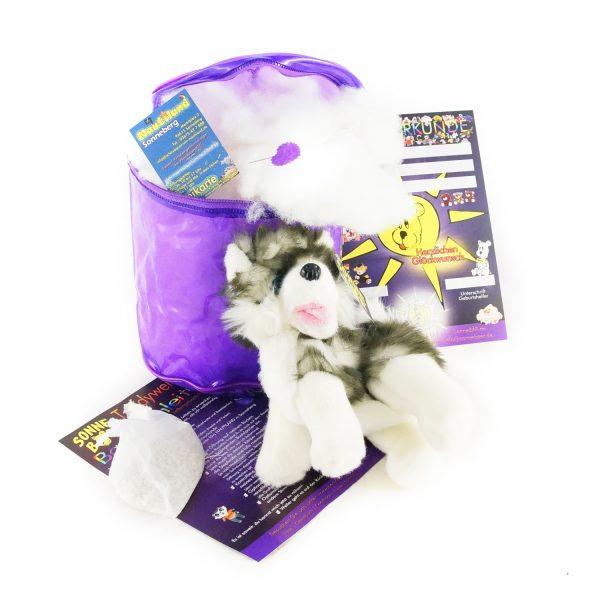Teddywerkstatt-Bastelset-Husky-Fluffy-stehend