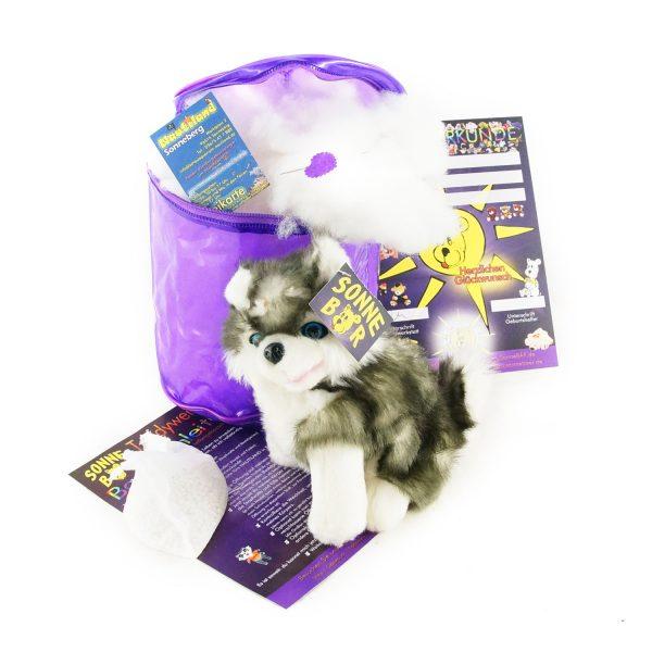 Teddywerkstatt-Bastelset-Husky-Fluffy-sitzend