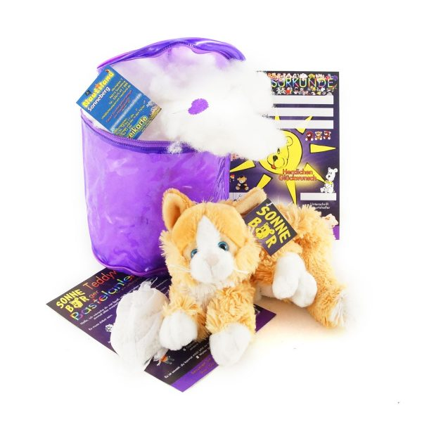Teddywerkstatt-Bastelset-Katze-Garfield-braun